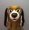 Beegle-spaniel cross breed_5