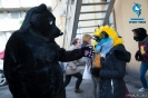 Furry Newbie day at SPB_21
