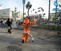 Furry Newbie day at SPB_32