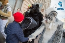 Furry Newbie day at SPB_62