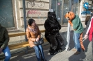 Furry Newbie day at SPB_65
