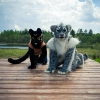 Fursuiting in Belorussia!_6