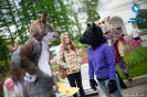 Fursuit parade_15