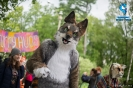 Fursuit parade_56