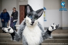 Fursuit parade_6