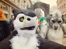 Furries at Saint Patrick's Day (2014)_21