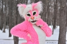 The pinkest dog in the world!_1