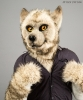 Mr. Grey (partial fursuit)_3