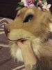 Natea (partial fursuit)_2