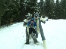 Our 2 first fursuits Gabriel and Chester_1