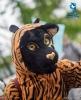 Fursuit parade_26