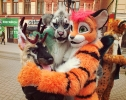 Furries at Saint Patrick's Day (2014)_17