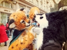 Furries at Saint Patrick's Day (2014)_1