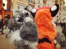 Furries at Saint Patrick's Day (2014)_31