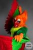 Archi the Parrot!_6