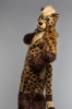 Kenta Starr (cheetah fursuit)_3